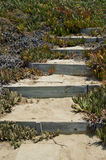 Escaliers à la plage Image libre de droits