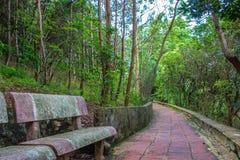 Escaliers à un temple dans Son La, Vietnam Photographie stock libre de droits
