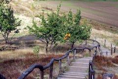 Escaliers au mur Teufelsmauer de ` de diables en montagnes de Harz Photographie stock libre de droits