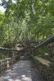 Escaliers au naturel Image libre de droits