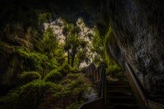 Escaliers avec les balustrades, sortie de caverne dans la forêt image libre de droits