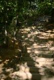 Escaliers croissants Images stock
