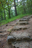 Escaliers d'un vieux château photo libre de droits