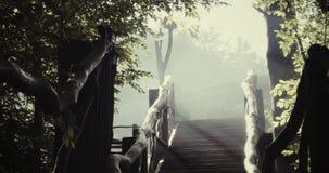 Escaliers dans la brume de matin banque de vidéos