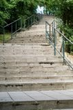 Escaliers dans la forêt images libres de droits
