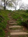 Escaliers dans le jardin botanique de Kyiv photo stock