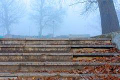 Escaliers dans un début de la matinée froid de décembre Images libres de droits