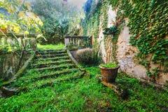 Escaliers dans un jardin abandonné en Toscane Image stock