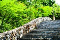 Escaliers de granit et murs en pierre au jardin et à la plante verte image libre de droits