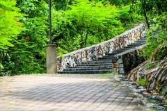 Escaliers de granit et murs en pierre au jardin et à la plante verte image stock