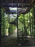 Escaliers de tire-bouchon dans le couloir rose image stock