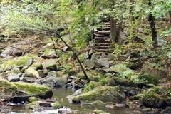 Escaliers des pierres en vallée de rivière présagée Image stock
