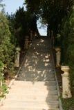 Escaliers du parc Photo stock