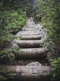 Escaliers en bois Image libre de droits
