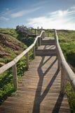 Escaliers en bois de voie montant en rebord vert scénique de côte atlantique en ciel bleu Photos stock
