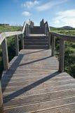 Escaliers en bois de voie montant en rebord vert scénique de côte atlantique en ciel bleu Photographie stock