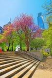 Escaliers en parc d'amour avec la fontaine au centre de la ville de Philadel Photos stock