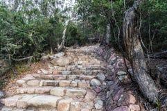 Escaliers en pierre à la surveillance de baie de verre à vin, Tasmanie images stock