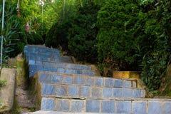 Escaliers en pierre à un temple Photos libres de droits