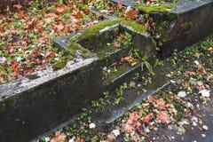 Escaliers en pierre foncés vides avec les feuilles rouges Images stock