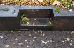 Escaliers en pierre humides vides en parc automnal Image libre de droits
