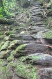 Escaliers en pierre indigènes au site archéologique de Ciudad Perdida Images libres de droits