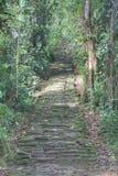 Escaliers en pierre indigènes dans le site archéologique de Ciudad Perdida Photographie stock libre de droits