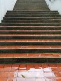 Escaliers en pierre rugueux couverts photographie stock libre de droits