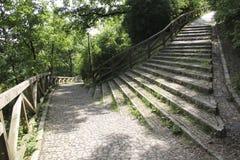 Escaliers en stationnement Photo libre de droits