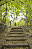 Escaliers en stationnement Photo stock
