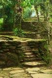 Escaliers et terrasses en pierre dans Ciudad Perdida, Colom Photo libre de droits