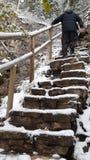 Escaliers extérieurs photographie stock libre de droits