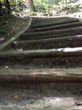 Escaliers jusqu'au dessus Image stock