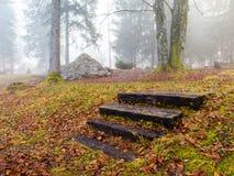 Escaliers oubliés Photo libre de droits