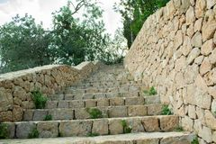 Escaliers pour verdir le ciel photos libres de droits