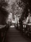 Escaliers romantiques Photographie stock