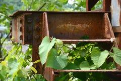 Escaliers rouillés en métal Image libre de droits
