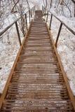Escaliers rouillés en métal descendant photo libre de droits