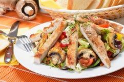 Escalope della Turchia su insalata mixed Fotografie Stock Libere da Diritti