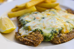 Escalope in spinach Stock Image