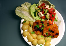 Escalopes with noodles and salad. Two pieces of classical breaded schnitzel, tomato salad with feta on chinese cabbage leaves, pasta, seasoned with parsley royalty free stock images