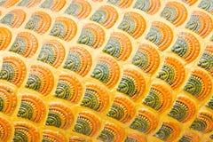 Escama del estuco de la serpiente. Imagen de archivo libre de regalías