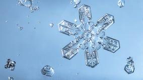 Escama hermosa de la nieve en un cierre azul claro del fondo para arriba fotografía de archivo libre de regalías