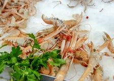 escamarlanes омаров Норвегии scampi морепродуктов стоковое изображение rf