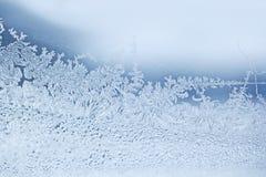 Escamas de la nieve Fotos de archivo
