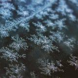 Escamas de la nieve Fotos de archivo libres de regalías