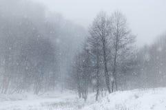Escamas de la nieve que caen sobre paisaje en invierno Imagen de archivo libre de regalías