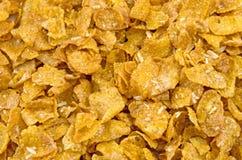 Escamas del cereal Fotografía de archivo libre de regalías