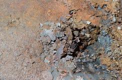 Escamas del moho en una hoja del hierro oxidado Fondo de la corrosión del moho del metal foto de archivo libre de regalías