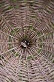 Escaninho de bambu Fotografia de Stock Royalty Free